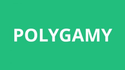 Polygamy: Alternatives to Legal Marriage